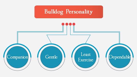 Bulldog Personality
