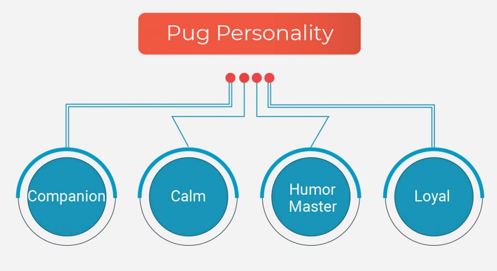 Pug Personality