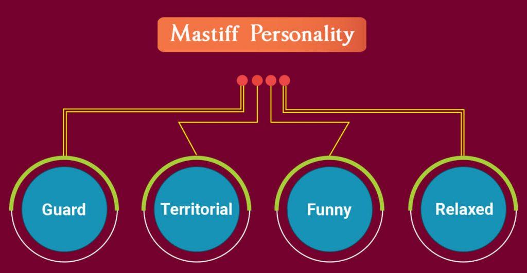 Mastiff personality