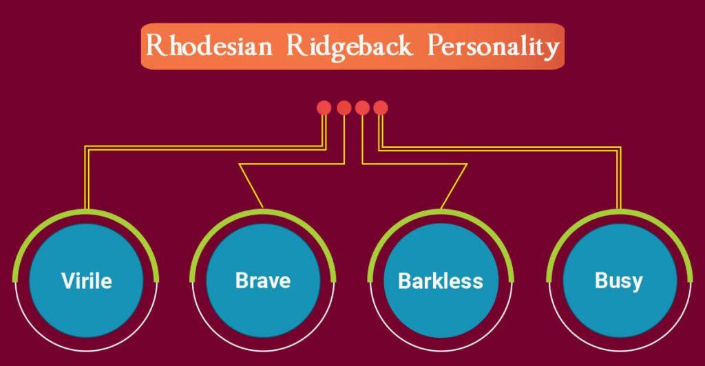 Rhodesian Ridgeback personality