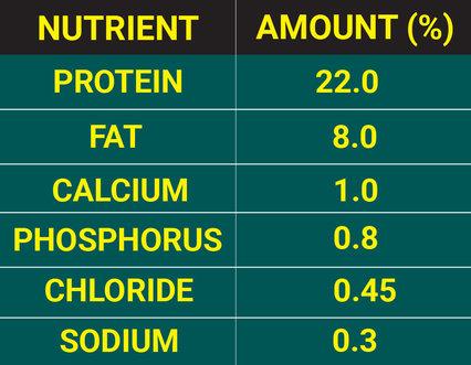 Puppy Nutrient Amount