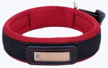 Handmade Genuine Leather Collar for Dog